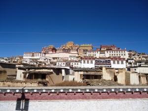 Jonny Blair at the Ganden Sumtseling Gompa Tibetan monastery