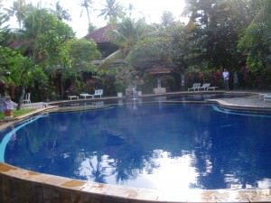 Travelling Northern Irishman at the Puri Bali Hotel in Lovina