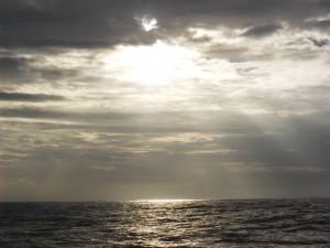 whale watching in Mirissa Sri Lanka by Jonny Blair