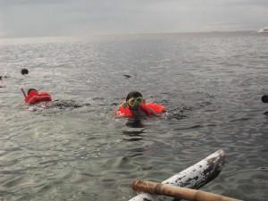 snorkelling at balicasag