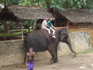 riding elephants in Pinnewala Sri Lanka