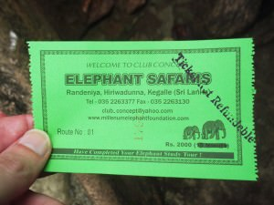 Ticket for elephant safaris in Pinnewala - 2000 Rupees
