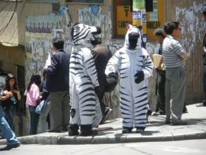 zebra crossings in La Paz