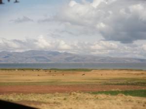 La Paz to Desaguadero great countryside
