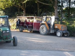 Riding a tractor in Sark Channel Islands