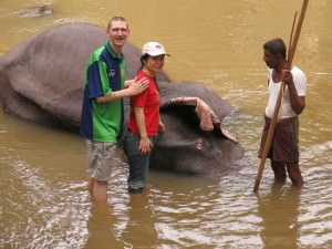 Jonny Blair and Panny Yu with elephants in Pinnewala Sri Lanka