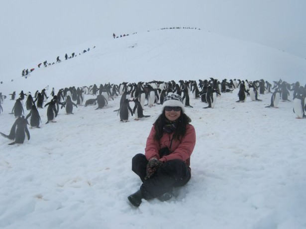 How to travel Antarctica for cheap by Panny Yu