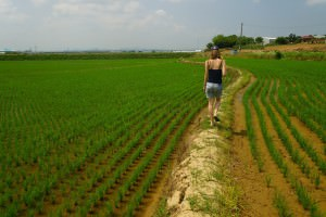 Audrey Bergner That Backpacker Korea a lifestyle of travel