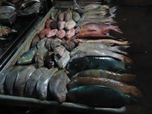 Kota Kinabalu night market fish