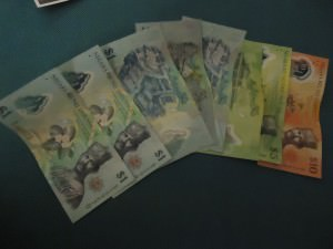They use Brunei Dollars in Brunei