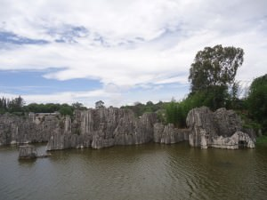 stone forest by lake in shilin