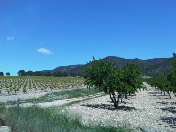 alicante travel in spain countryside
