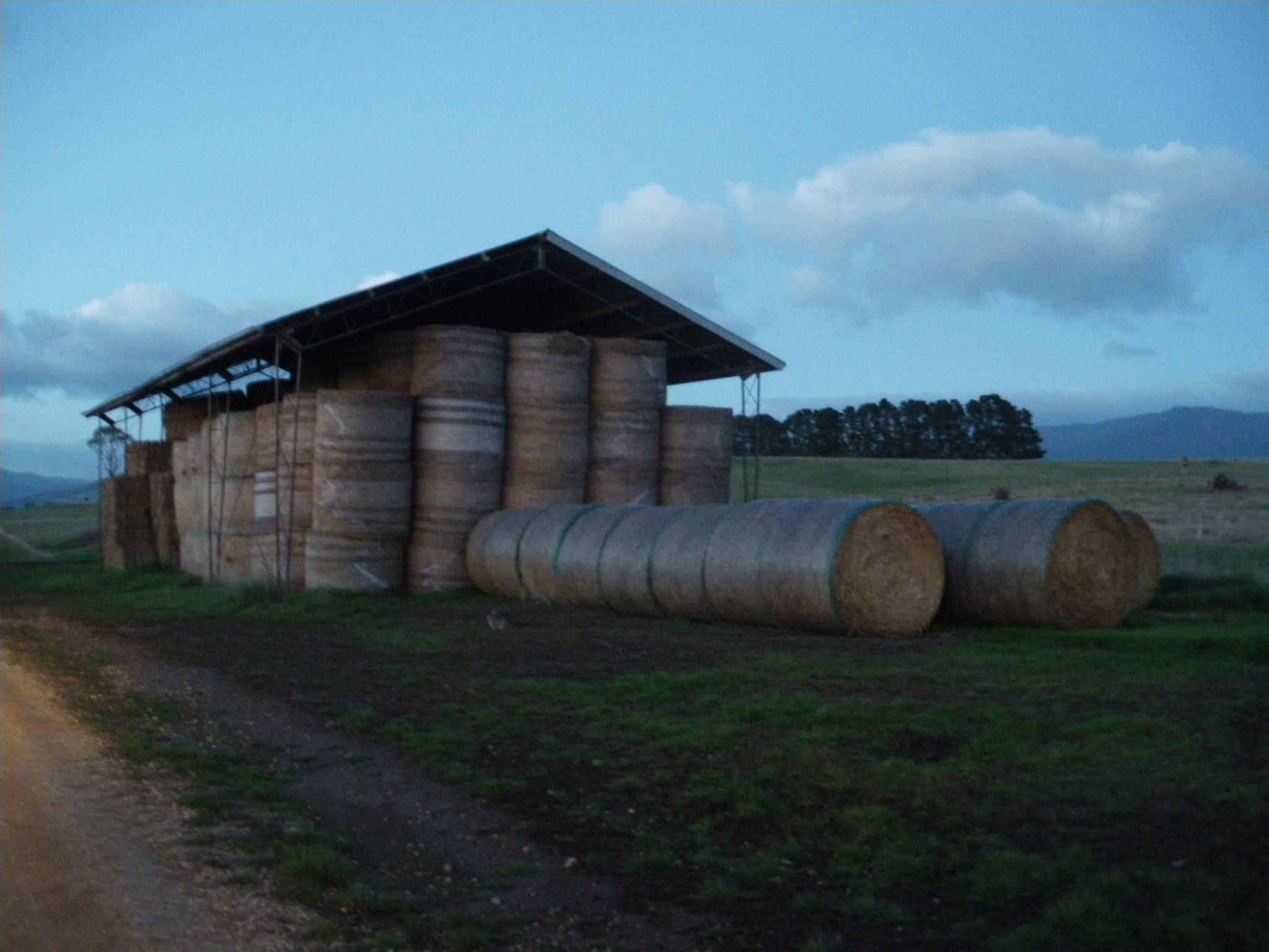 sleeping in a farmers barn in tasmania