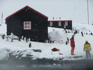postcards at port lockroy