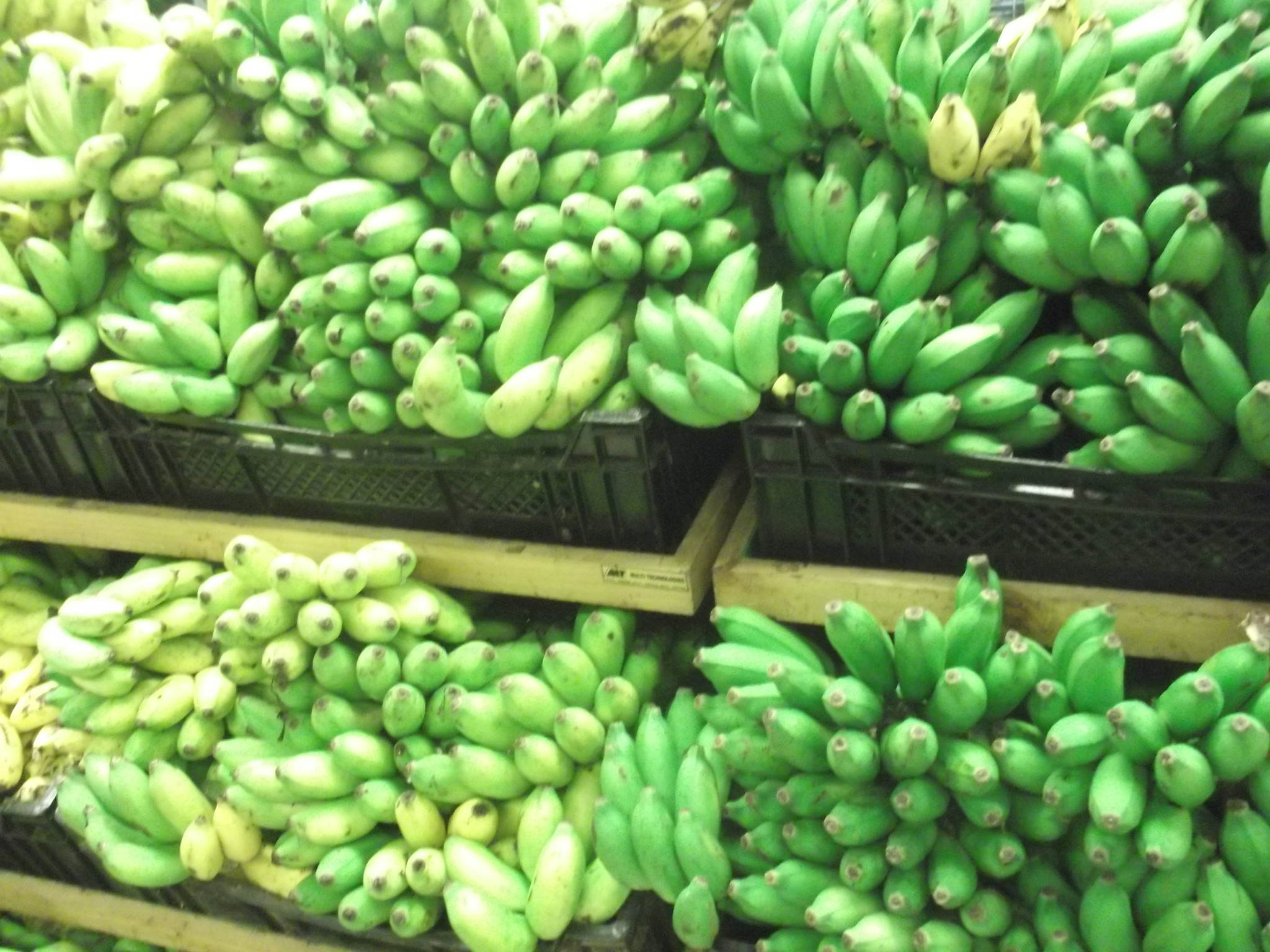bananas in sri lanka dont buy in bulk