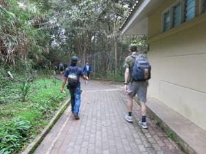 carsons falls mount kinabalu hike