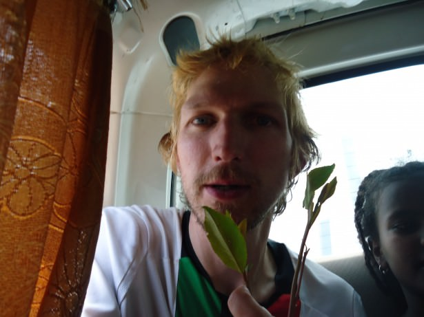 chewing the qat