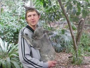 koala bear hugging