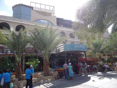 jericho palestine visitor centre