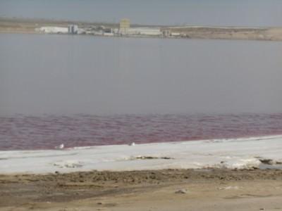 pink lake azerbaijan