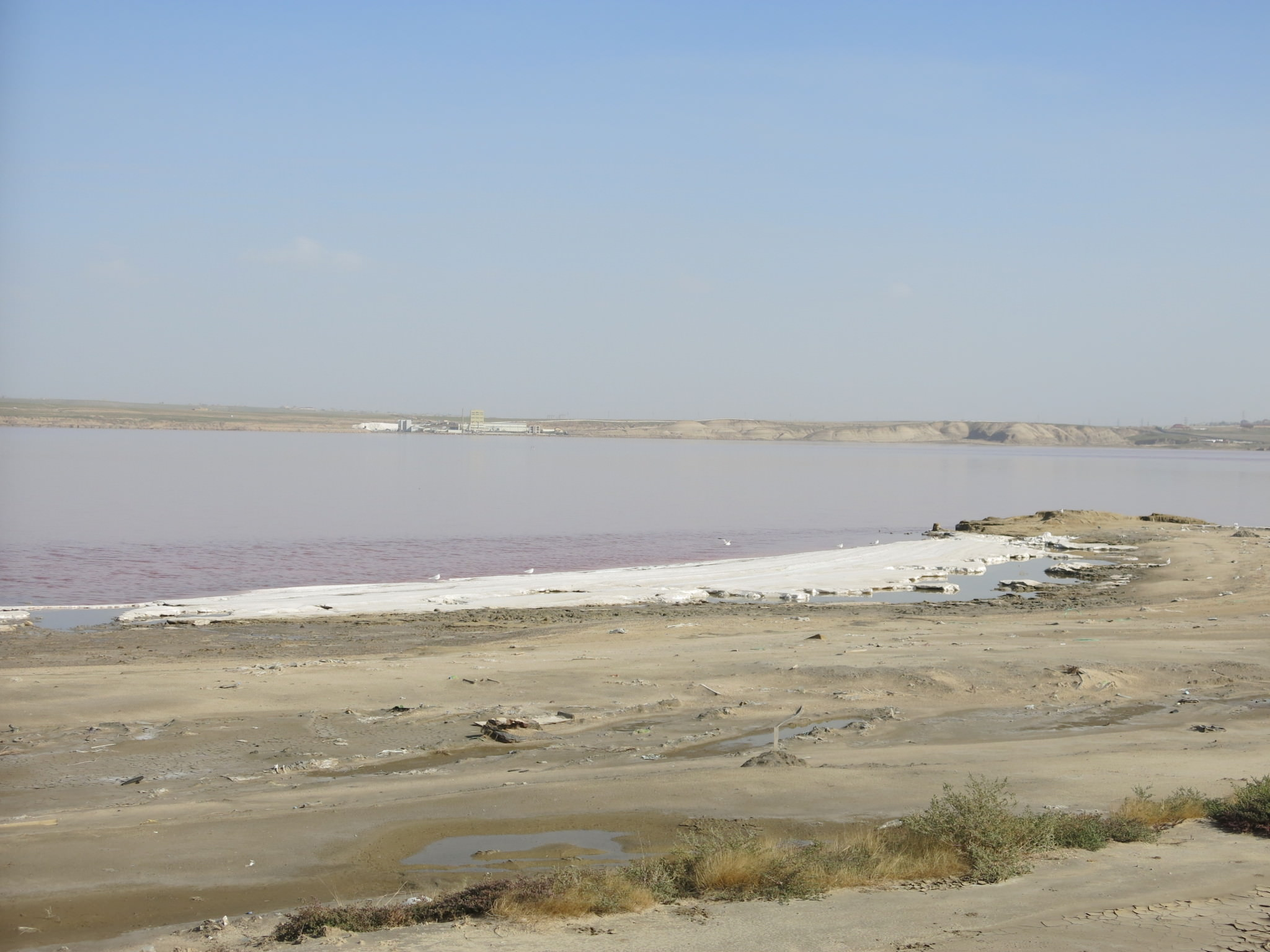by the pink salt lake masazir