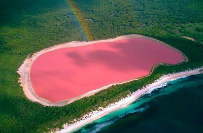 lake masazir pink lake azerbaijan