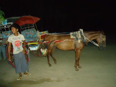 horse and cart sunrise at bagan