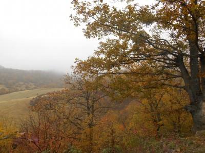 autumn in gandzasar monastery