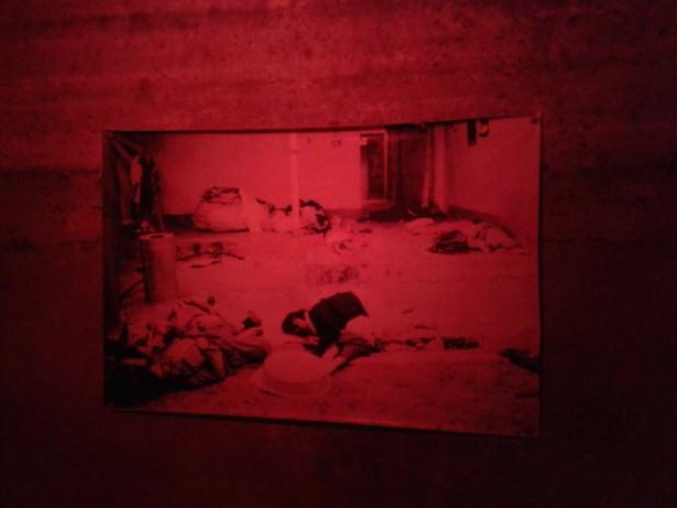 images in amna suraka iraq