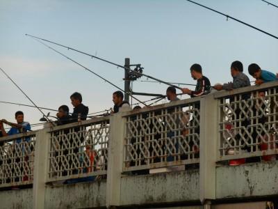 istanbul fishermen turkey