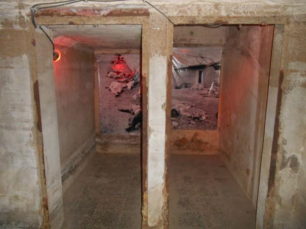 amna suraka cells iraq