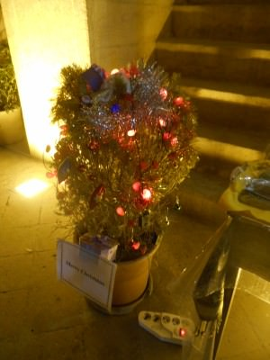 iran christmas tree