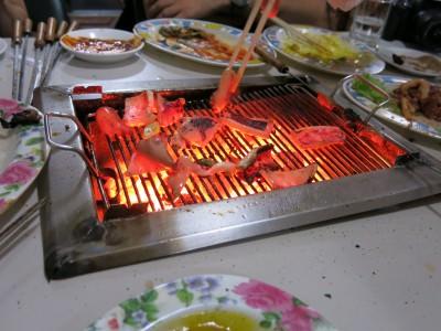 korea north squid dprk
