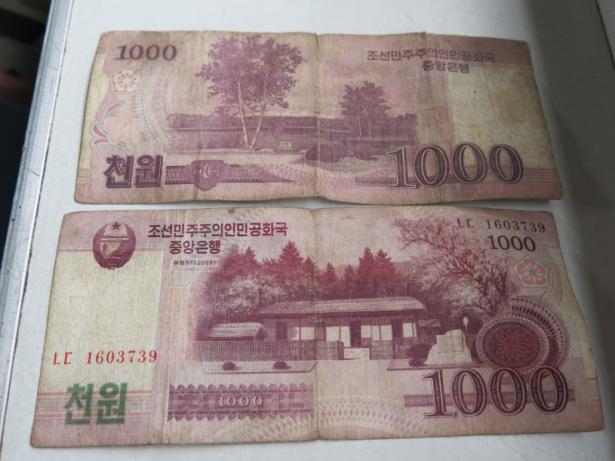 north korean won