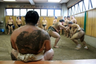 World Travellers: Annette White watched Sumo in Japan!