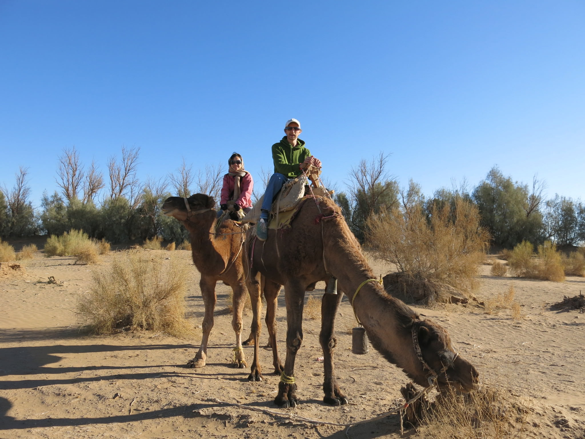 backpacking on camels iran
