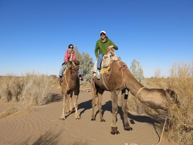mesr desert camel riding