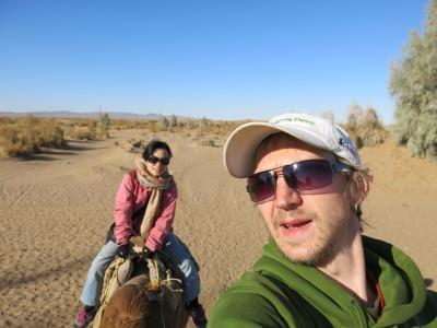 desert camels mesr