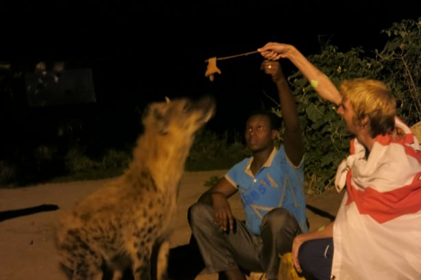 Living for the moment in Ethiopia feeding hyenas.