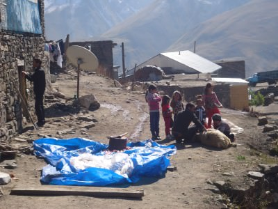 lamb killing xinaliq