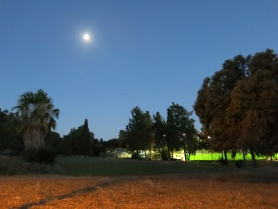 Moonrise at Mizra