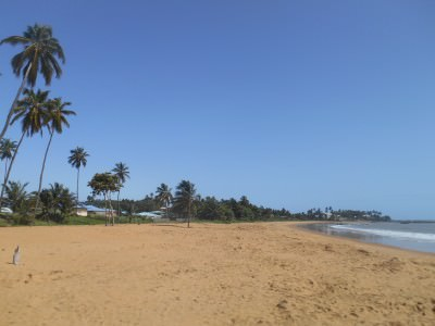The beach near the Novotel in Cayenne where we saw the turtles.