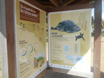 Information boards on the turtles at Novotel Beach, Cayenne, French Guyana.
