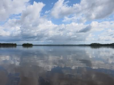 View onto the Essequibo from Sloth Island.