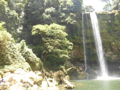 Nature at Misol Ha waterfall in Mexico.