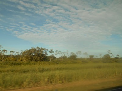 Views on the road from Paramaribo to Nieuw Nickerie.
