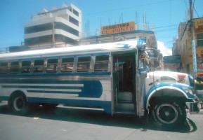 Tuesday's Travel Problem: Bus bugs on chicken buses in Guatemala.