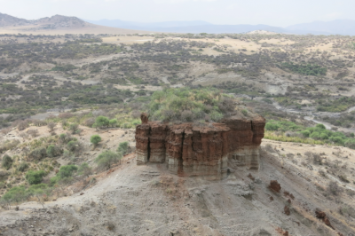 Oldupai Gorge Tanzania, in the middle of desert and jungle!