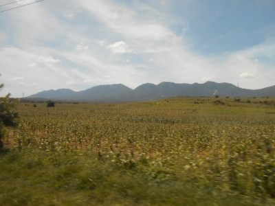 Countryside between Las Chinamas and San Salvador.