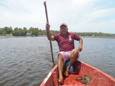 boat tours mangrove